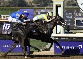 Sistemul norocos » Bilet incredibil câștigat la cursele de cai, a ratat la mustață potul cel mare